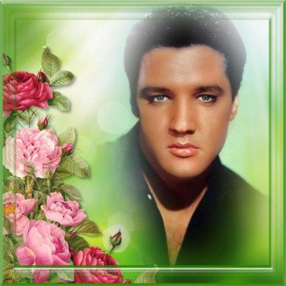 http://elvisbluestarlove.files.wordpress.com/2013/04/534792_563310827033840_535282388_n.jpg